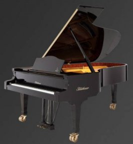Рояль Julius Bluthner BLU 02 Bubinga, polished