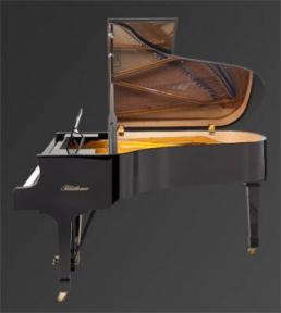 Рояль Julius Bluthner BLU 06 Ebony, satin