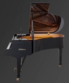 Рояль Julius Bluthner BLU 10 Black, tarnished