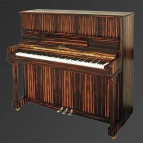 Піаніно Julius Bluthner BLU A Special colors