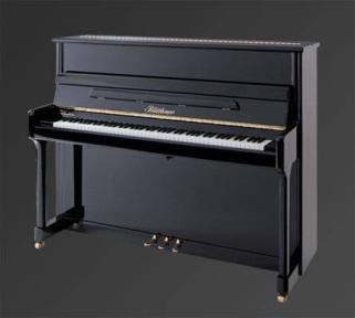 Піаніно Julius Bluthner BLU C Special colors
